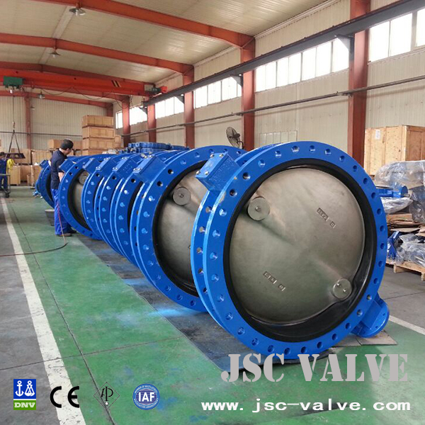 Concentric butterfly valve